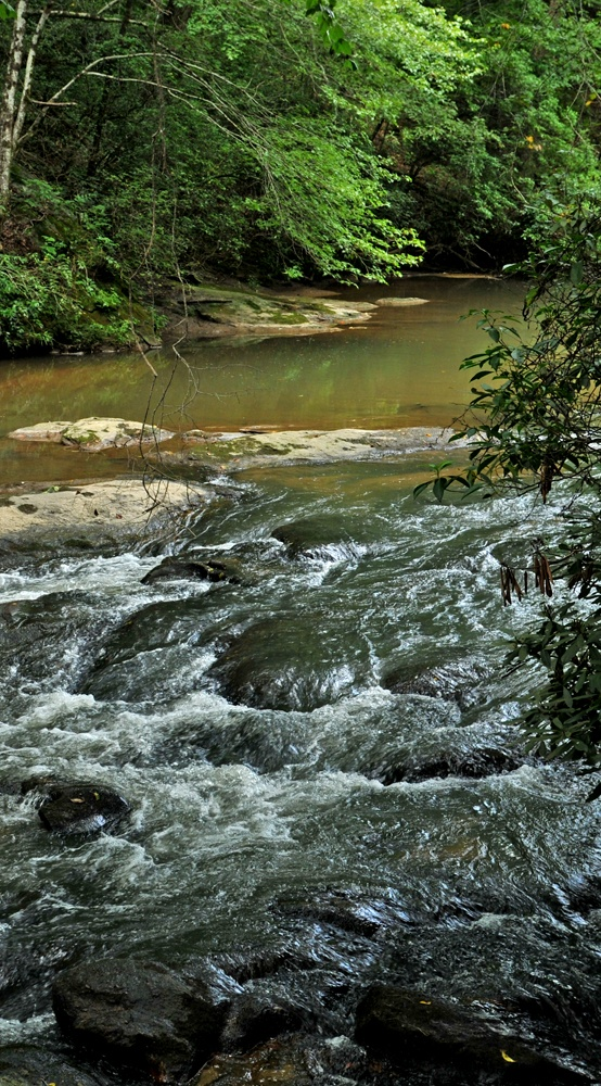 17 best images about blue ridge ocoee on pinterest for Fly fishing blue ridge ga