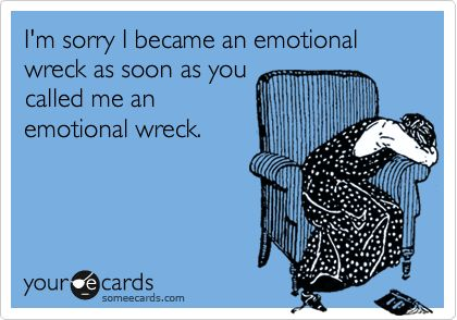 I'm sorry I became an emotional wreck as soon as you called me an emotional wreck.: Pregnancy Hormone