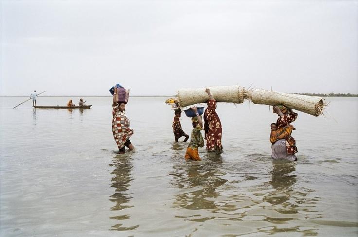 L A K E   C H A D :    Lake Chad Seeks Attention!