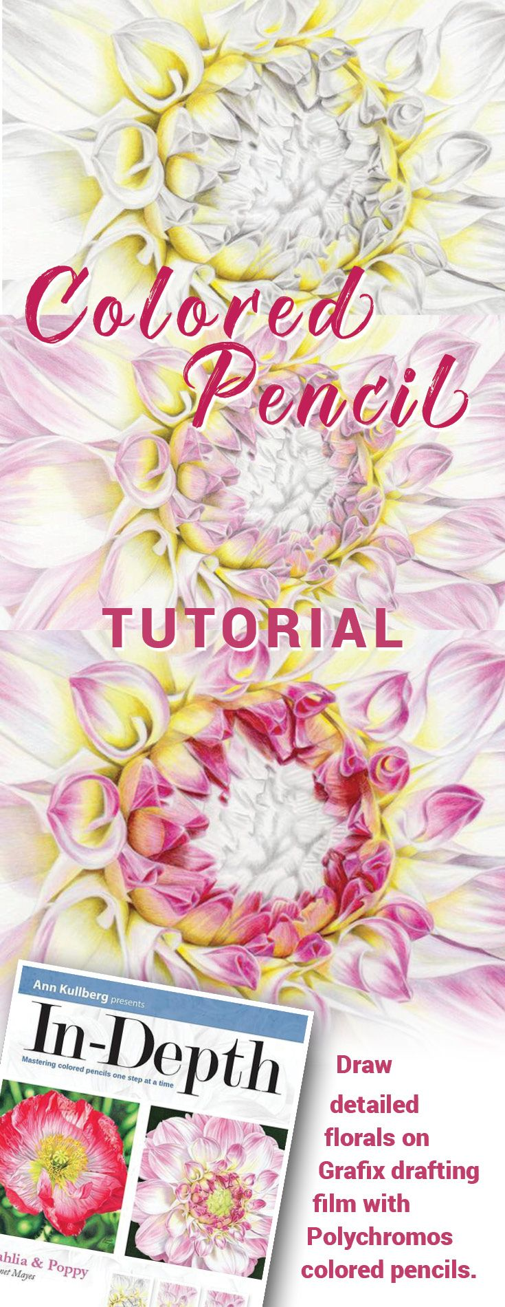 how to draw flowers polychromos