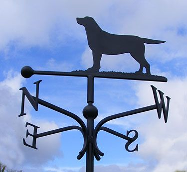 Labrador Weather Vane