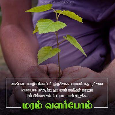 மரம் வளர்ப்போம் | சுற்றுச்சூழல் பாதுகாப்பு | செல்லமே செல்லம்