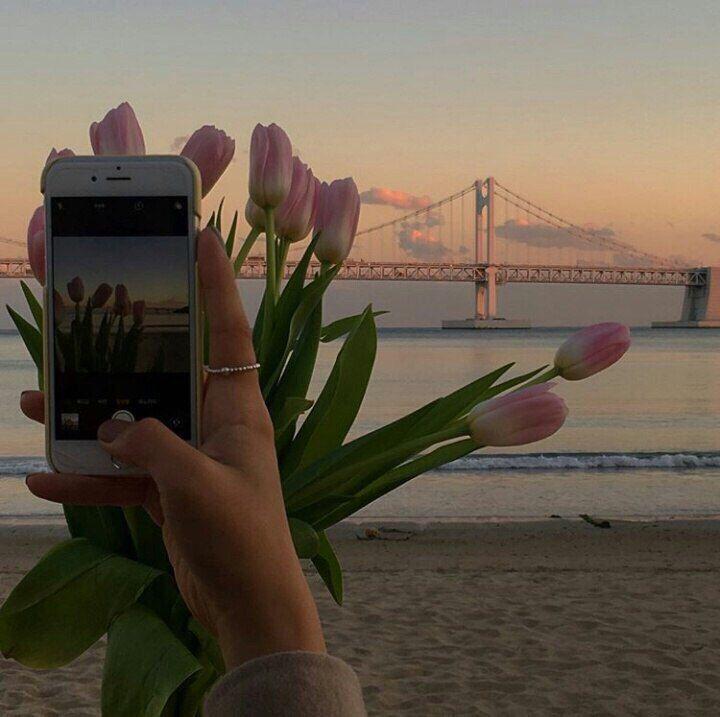 7 Nebo Foto Na Avu Bez Lica Ishodniki Lajk Tajm Instagram Idei