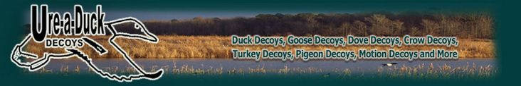 Sea Duck Decoys, Motion Decoys, Duck Decoys, dove decoys, pigeon decoys, turkey decoy, Goose Decoys and more