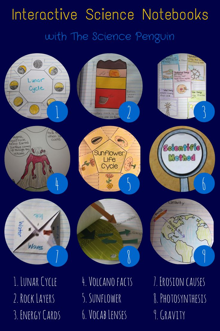 Science Notebooking Video 1. Lunar Cycle 2. Rock Layers 3. Energy Cards 4. Volcano Facts 5. Sunflower 6. Vocab Lenses 7. Erosion Causes 8. Photosynthesis 9. Gravity