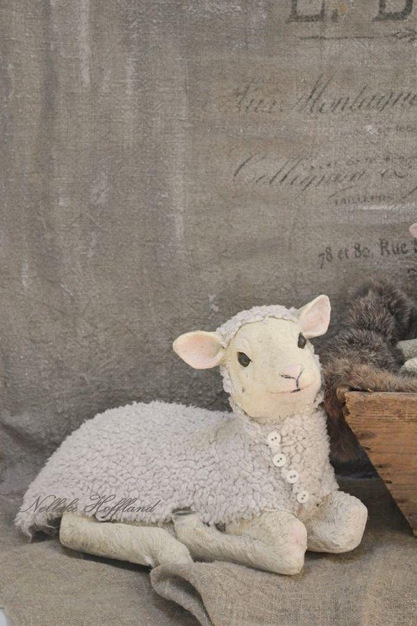 **Jasje van wol voor het schaap** (Sept.2016)