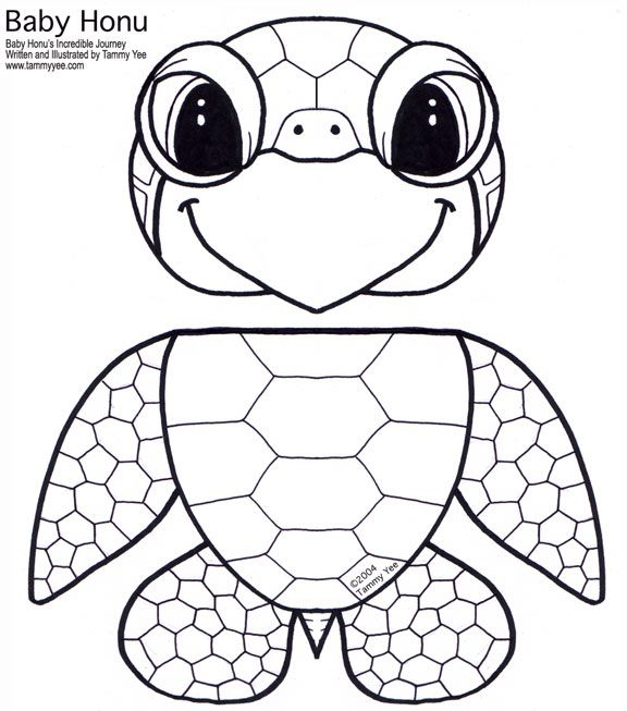 168 best Thema schildpadden kleuters / Turtles theme