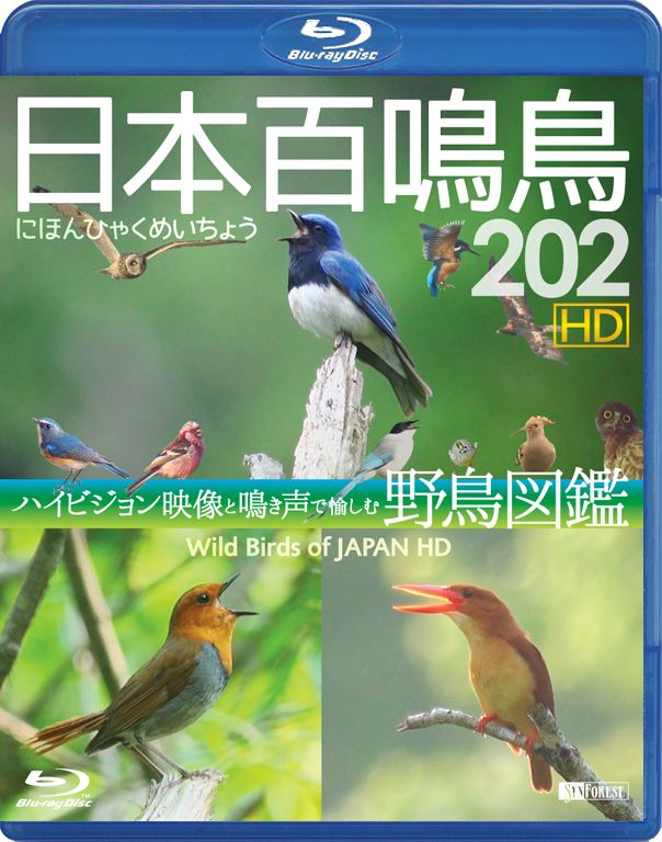Blu-ray『日本百鳴鳥 202 HD』Cover Jacket - Graphic Design (by Yuji Kudo) 撮影:佐藤 進 © 2014 Susumu Sato / Synforest Inc.