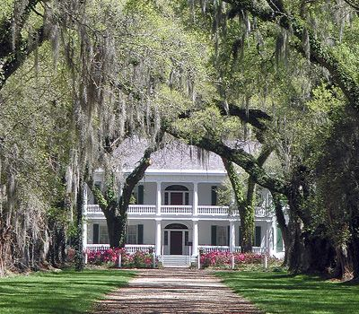 southern plantations - Bing Images