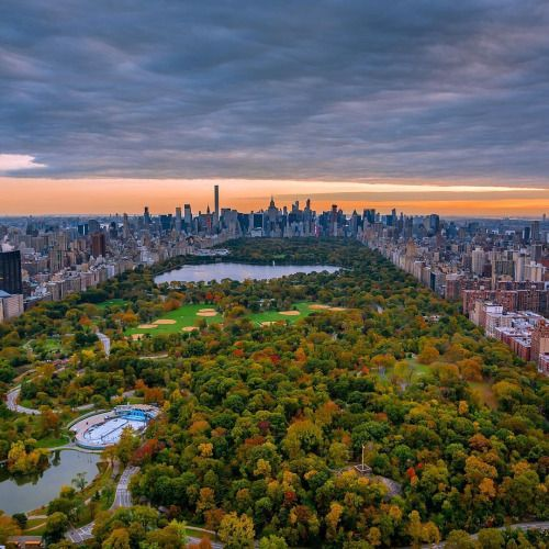 Birds view of Central Park by Greg @GregRoxPhotos. | New York City Feelings | Bloglovin'
