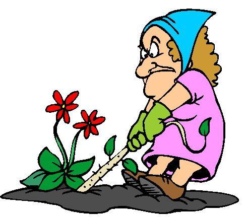 25 Best Gardening Images On Pinterest