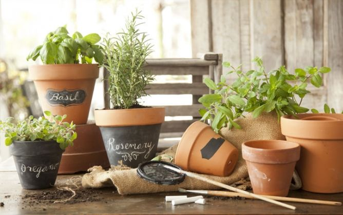 How to Make Chalkboard Herb Planters ~ From: The Paula Deen Test Kitchen ~ so cute ~ visit www.pauladeen.com