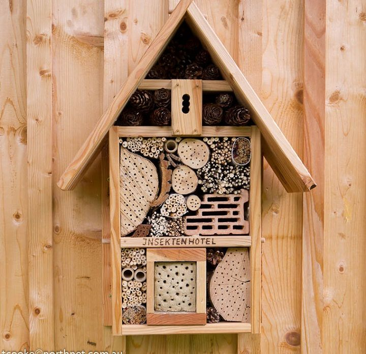 Insect Hotel...people underestimate the importance of insects in their garden. Did you know ladybugs need to hibernate for the winter? Species of solitary bees build personal hives! Spiders and wasps keep the bad caterpillars away!