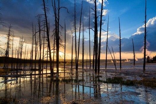 ...il parco nazionale di Yellowstone, nel Wyoming, USA.