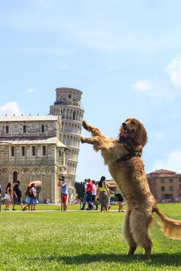 So I just hold here? Pisa cake!!