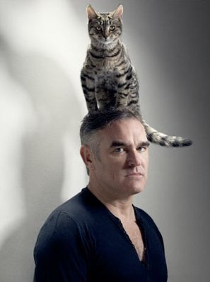 Morrissey. Not even a cat on the head can perk up mozza.