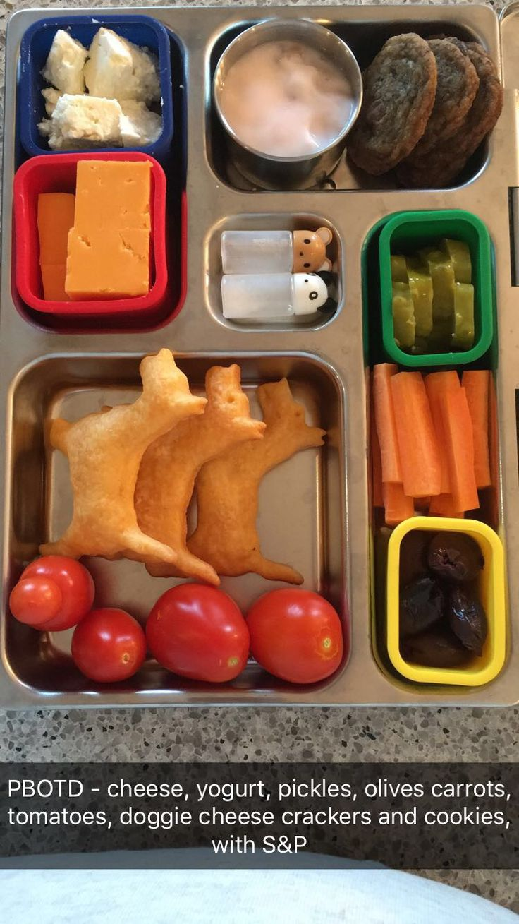 Planetbox - cheese, yogurt, cookies, pickles, olives, carrots, tomatoes, cheese crackers and S&P