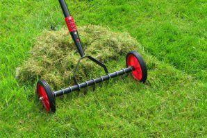 Itt az ideje a fű felújításának!