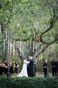 Wedding trees decorations decoration for home wedding decoration trees images dress and refrence junglespirit Images