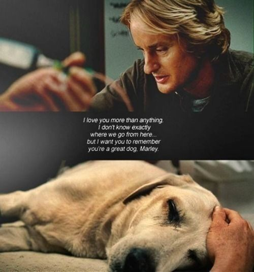marley and me, gets me every time. Me too!  Great movie!