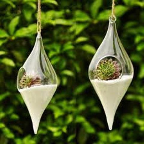 Simple Ideas for Adorable DIY Terrariums