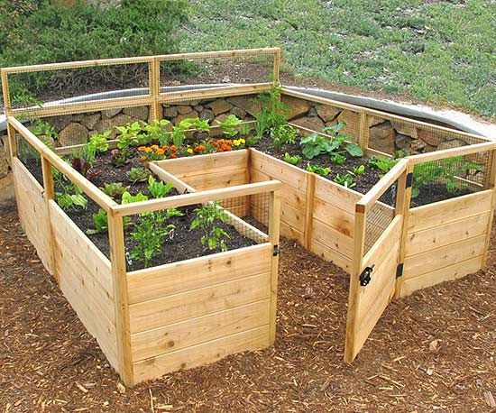 See how you can easily make your own raised garden beds. These kits are simple and perfect for any space in your backyard. Create charm and character with these unique kits.