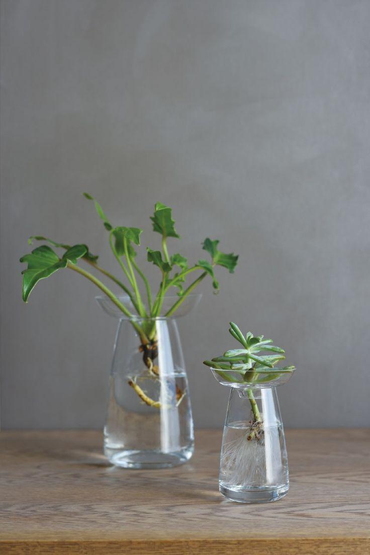 Vase Aqua Culture | #IdéeCadeau #Cadeau #Québec #Montreal #Déco #Vase #Plante  #PendaisondeCrémaillère http://www.ideecadeauquebec.com/vase-aqua-culture/