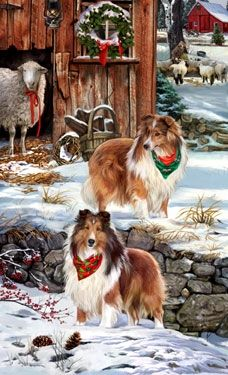 "Sheltie Christmas Holiday Cards are 8 1/2"" x 5 1/2"" and come in packages of 12 cards. One design per package. All designs include envelopes, your personal message, and choice of greeting.Select the inside greeting of your choice from the menu below.Add your personal message to the Comments box during checkout."