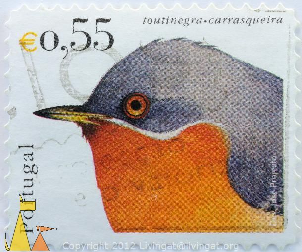 Portugal postage stamp #bird #illustration