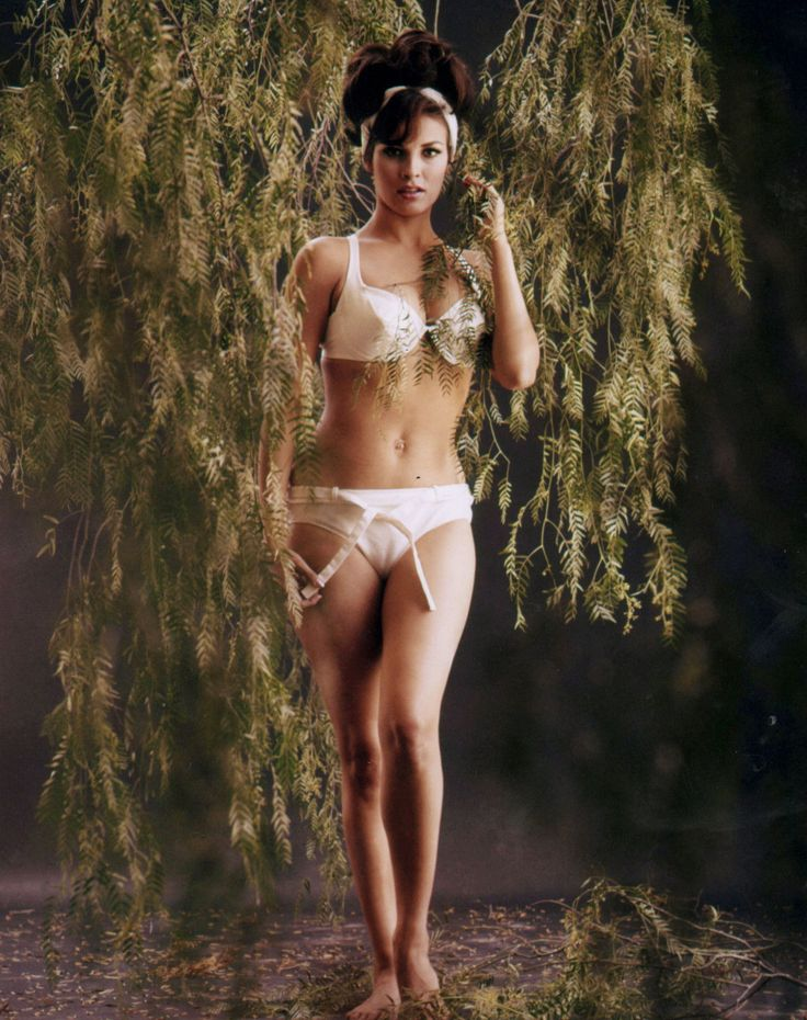 Raquel Welch In Bra And Panties Vintage Icons Of