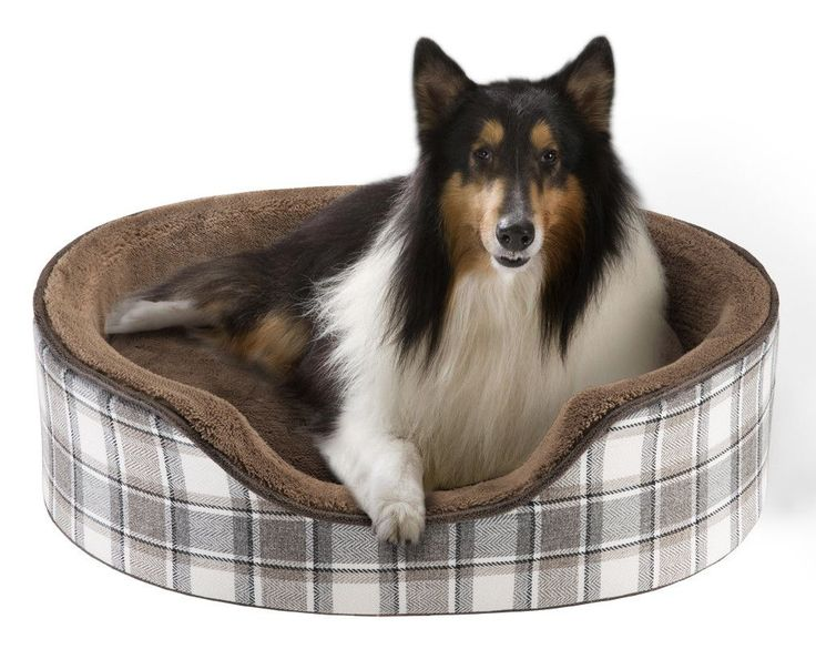 Dog Beds With Firm Sides