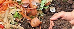 13 ingredientes que no debemos añadir al compost bajo ningún concepto