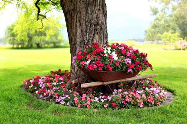21 Awesome Garden Ideas For Small Flowers Decor Home Ideas Landscaping Around Trees Front Yard Plants