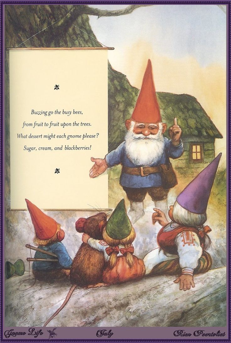 Gnome 4: Rien Poortvliet. From The Book Gnome Life