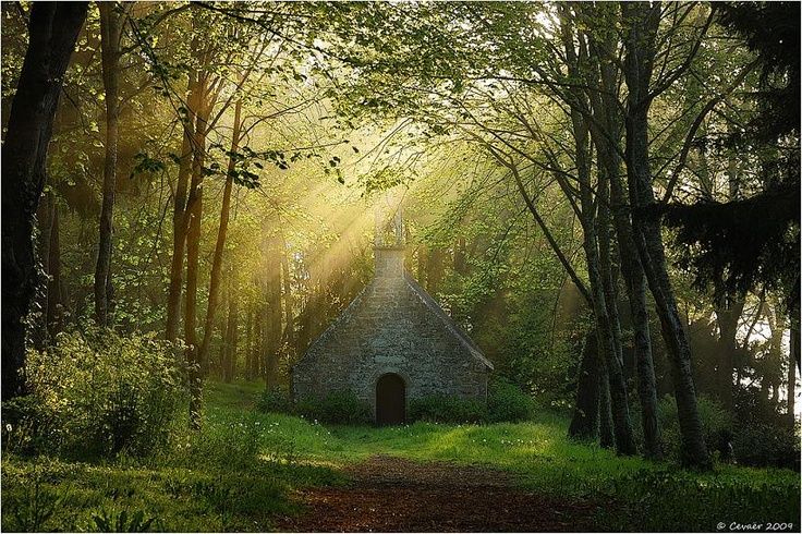 chapel calvary , Nevez, Finistere, Brittany, France    by Kerivoa@flickr: Enchanted Wood, Beautiful Photos, Sun Ray, Enchanted Forests, Finister Brittany, Brittany France, My Brittany, Wood Photos, Bretagne Bzh