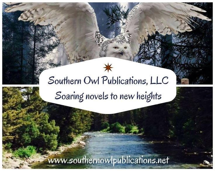 Publishing is scary nowadays, let us show you that it does not have to be. Trustworthy, legal and working for you. #Publishing, #Authors