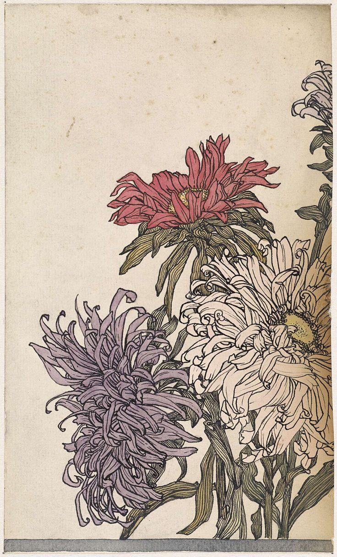 Chrysanten, Julie de Graag, 1887 - 1924