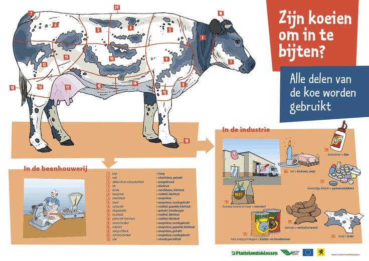 Poster-koe-omtebijten_orig.gif (1275×904)