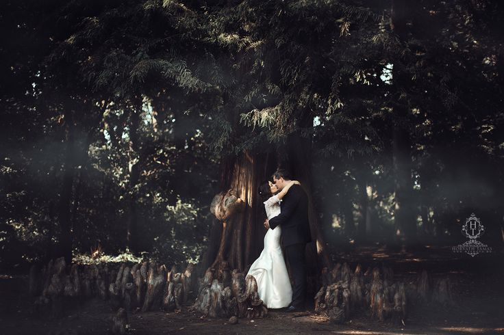 Forest wedding by HorvathTamas on 500px