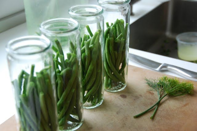 Spicy pickled green beans | SumYum | Pinterest
