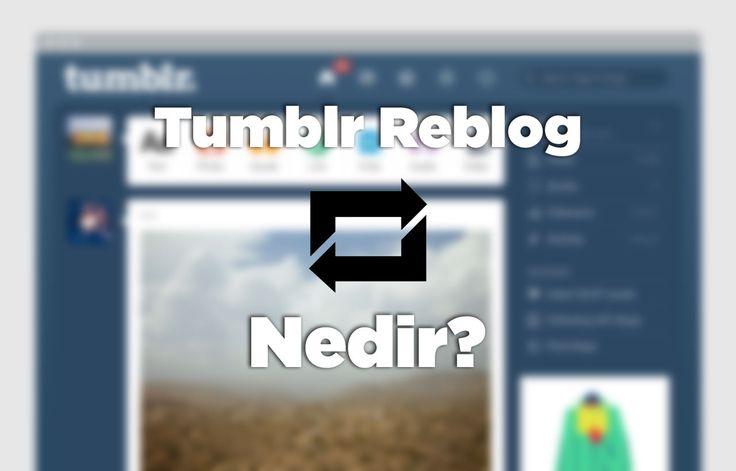 tumblr reblog nedir hilesi