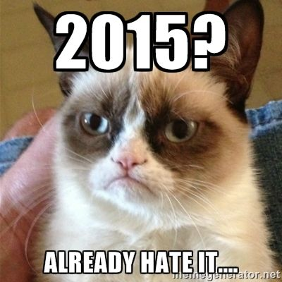 2015? Already hate it.... - Grumpy Cat | Meme Generator