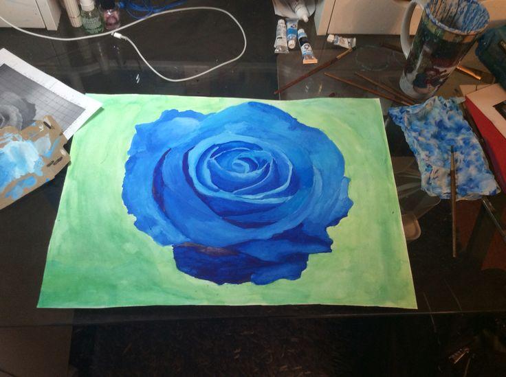 Rose in watercolour