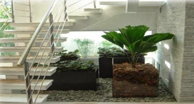 Jardim de Inverno - veja modelos, dicas e sugestões de quais planta usar!
