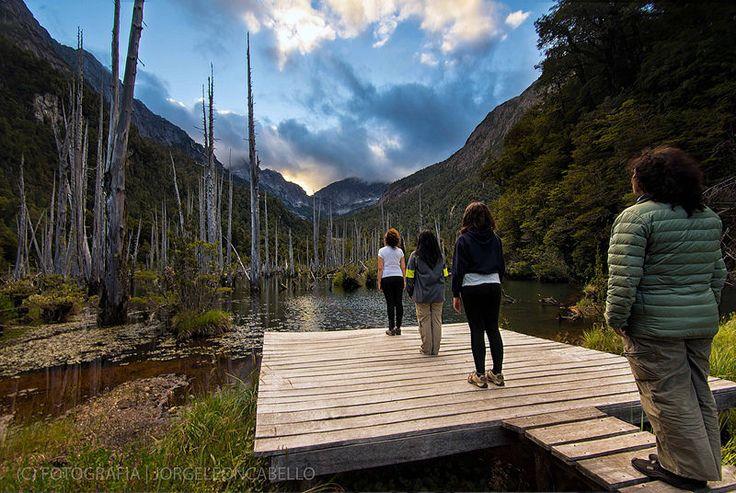 Abduction - Parque Tagua Tagua (Patagonia - Chile)