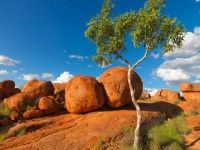 Devils Marbles Conservation Reserve, Northern Territory © Steve Parish/Nature Connect
