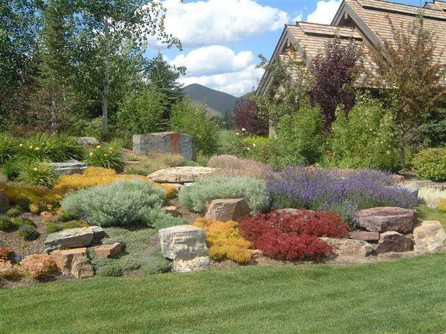 107 Best Garden Images On Pinterest | Gardening Nature And Plants