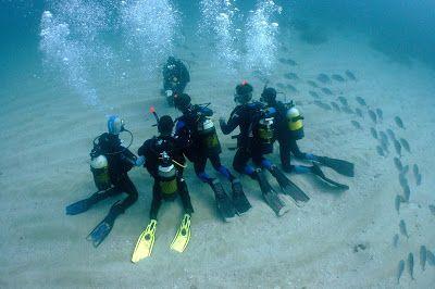 Seals diving center: 5+1 λόγοι για να ξεκινήσεις τις κατάδυσεις