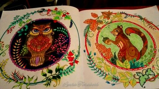 The Owl & The Squirrel from Enchanted Forest