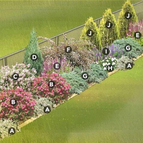 Creative Landscape Ideas with Big Impact – Alyssa Peebles